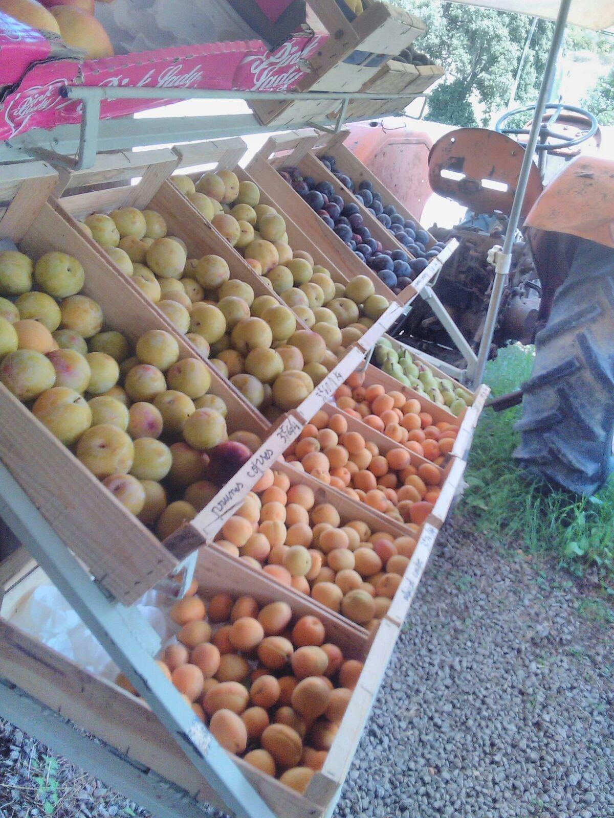 Fruits et legumes corses